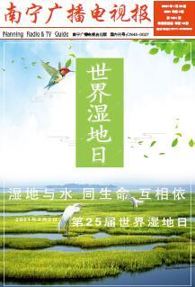 南宁广播电视报第316期